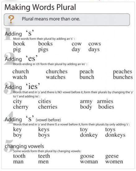 мужчины перевод на английский множественное